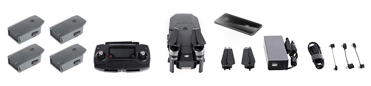 What fits in the Nanuk 920 DJI Mavic Hard Case